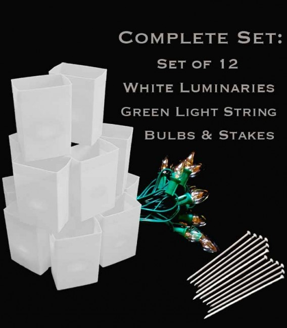 Set of 12 White Luminaries, Green Light String with Bulbs, Stakes