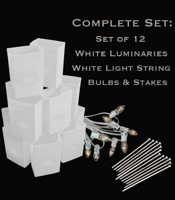 Set of 12 White Luminaries, White Light String with Bulbs, Stakes