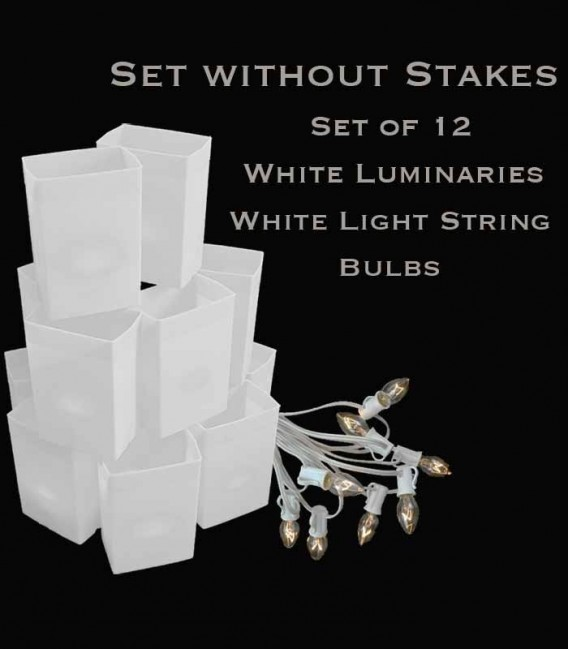 Set of 12 White Luminaries, White Light String with Bulbs, NO Stakes