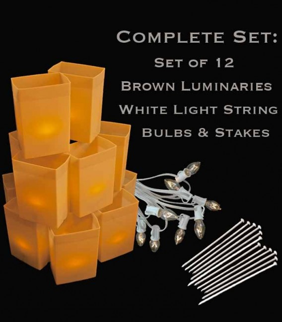 Set of 12 Brown Luminaries, White Light String with Bulbs, Stakes