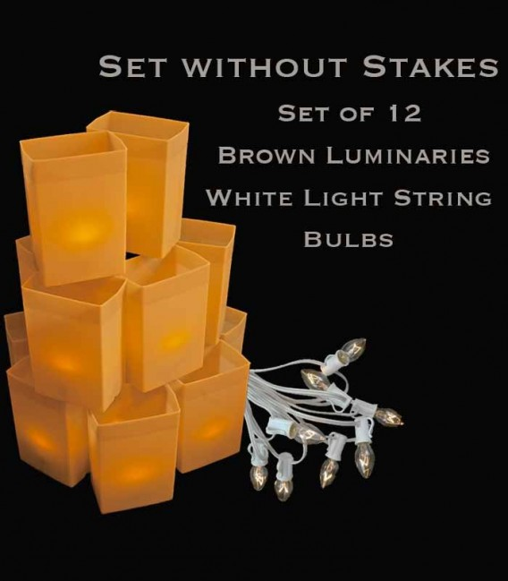 Set of 12 Brown Luminaries, White Light String with Bulbs, No Stakes