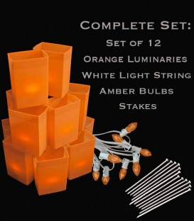 Set of 12 Orange Luminaries, White Light String, Amber Bulbs, Stakes