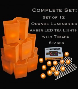 Set of 12 Orange Luminaries, LED Tea Lights & Stakes