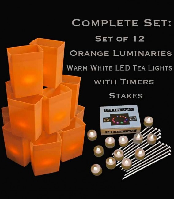 Set of 12 Orange Luminaries, Warm White LED Tea Lights with Timers, Stakes
