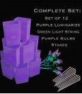 Set of 12 Purple Luminaries, Light String, Purple Bulbs, Stakes