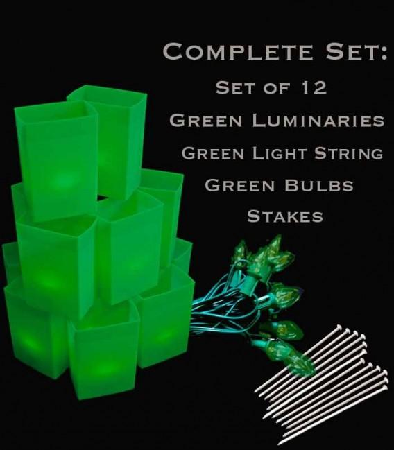 Set of 12 Green Luminaries, Green Light String, Green Bulbs, Stakes