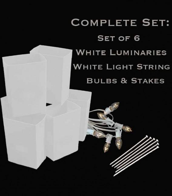Set of 6 White Luminaries, White Light String, Bulbs & Stakes