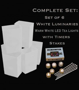 Set of 6 White Luminaries, LED Tea Lights & Stakes