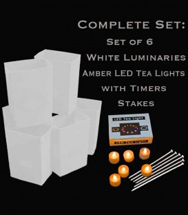 Set of 6 White Luminaries, Amber LED Tea Lights with Timers, Stakes