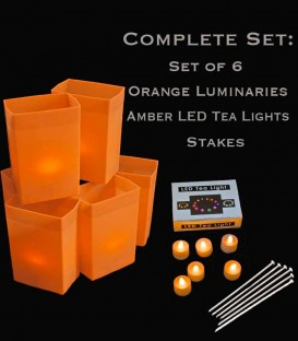 Set of 6 Orange Luminaries, LED Tea Lights & Stakes