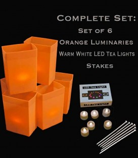 Set of 6 Orange Luminaries, Warm White LED Tea Lights & Stakes