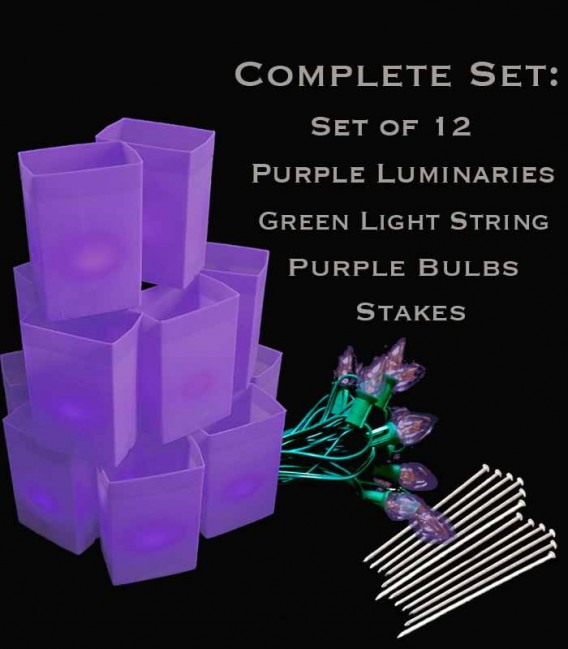 Set of 12 Purple Luminaries, Green Light String with Purple Bulbs, Stakes