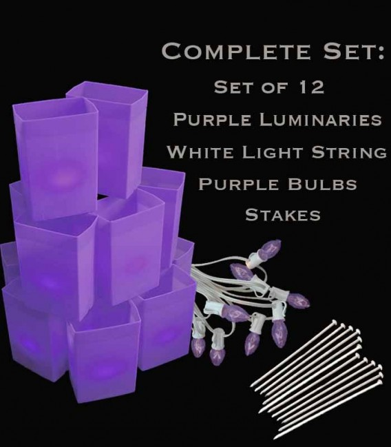 Set of 12 Purple Luminaries, White Light String with Purple Bulbs, Stakes