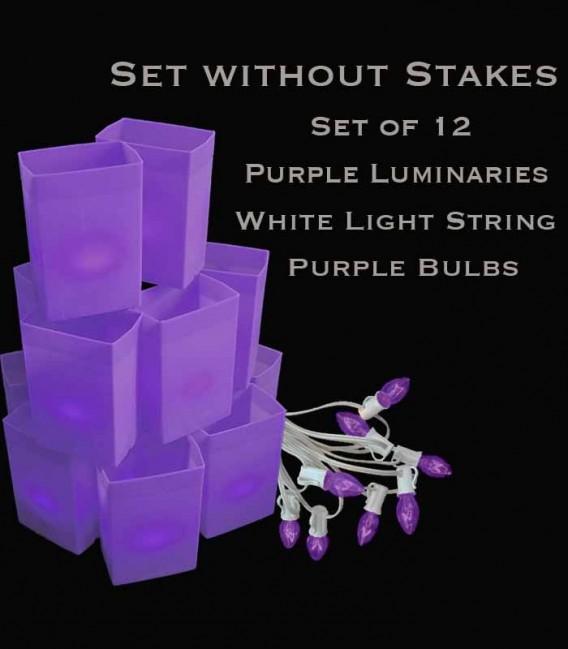 Set of 12 Purple Luminaries, White Light String with Purple Bulbs