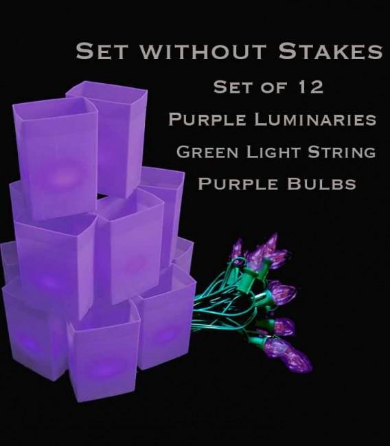 Set of 12 Purple Luminaries, Green Light String with Purple Bulbs