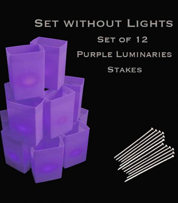 Set of 12 Purple Luminaries, No Lights, Stakes
