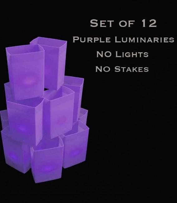 Set of 12 Purple Luminaries, No Lights, No Stakes
