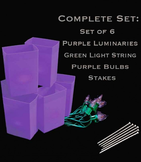Set of 6 Purple Luminaries, Green Light String, Purple Bulbs, Stakes