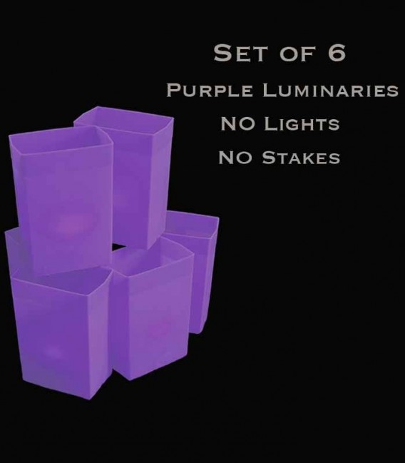 Set of 6 Purple Luminaries, No Lights, No Stakes