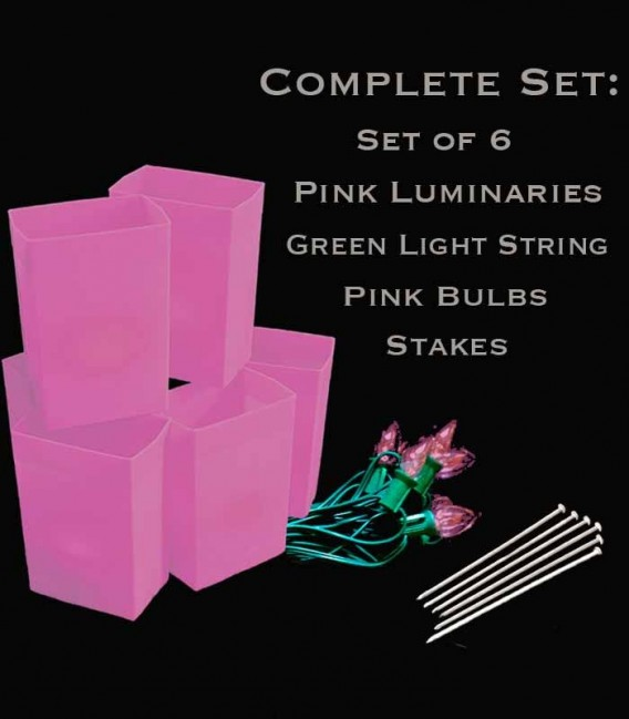 Set of 6 Pink Luminaries, Green Light String with Pink Bulbs, Stakes