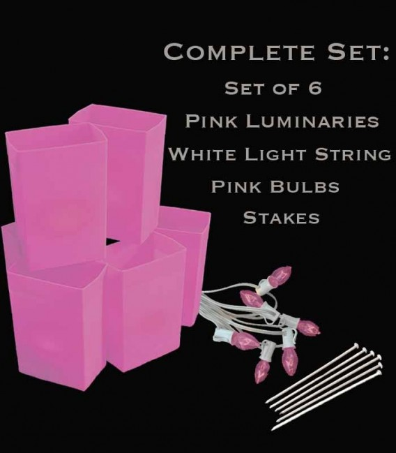 Set of 6 Pink Luminaries, White Light String with Pink Bulbs, Stakes
