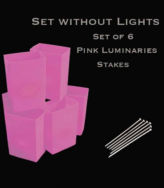 Set of 6 Pink Luminaries, No Lights,  Stakes