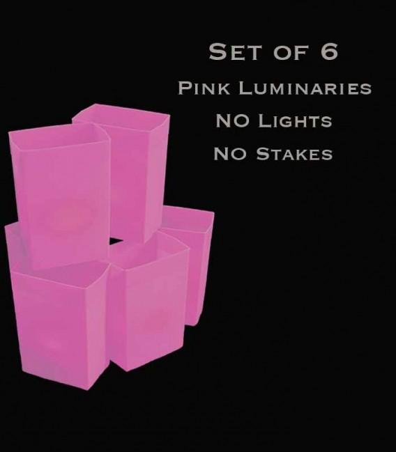 Set of 6 Pink Luminaries, No Lights, No Stakes
