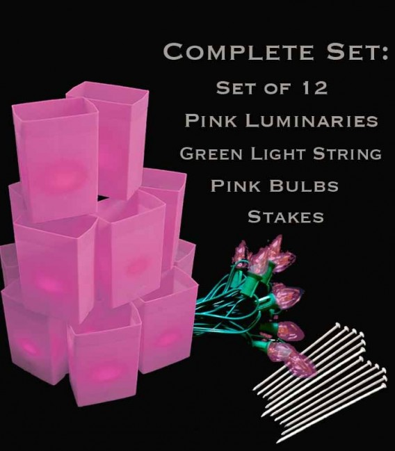 Set of 12 Pink Luminaries, Green Light Strings with Pink Bulbs, Stakes