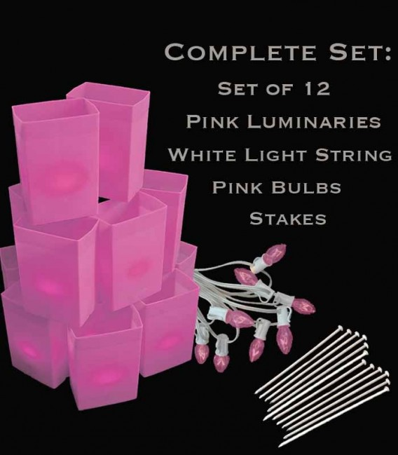 Set of 12 Pink Luminaries, White Light Strings with Pink Bulbs, Stakes