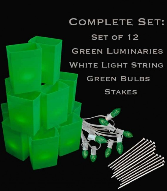 Set of 12 Green Luminaries, White Light String, Green Bulbs, Stakes