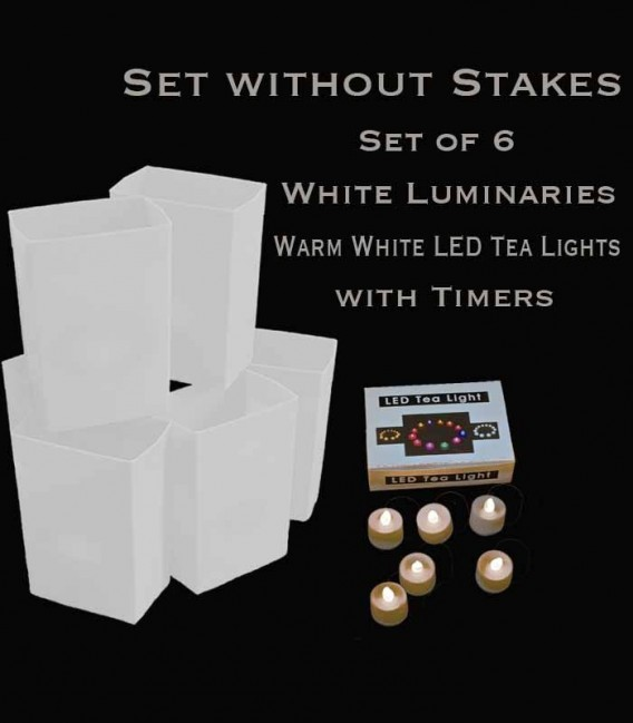 Set of 6 White Luminaries, warm white LED tea lights with timers, no stakes