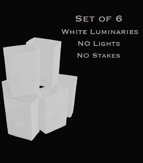 Set of 6 White Luminaries, no light source, no stakes