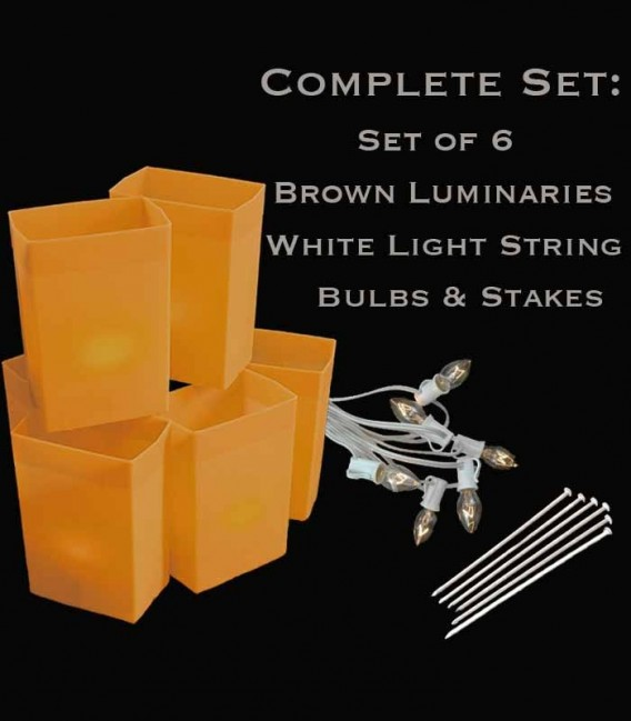 Set of 6 Brown Luminaries, white light string with clear bulbs, stakes