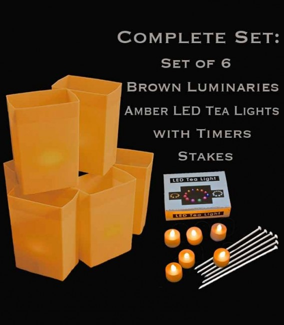 Set of 6 Brown Luminaries, amber LED tea lights with timers, stakes