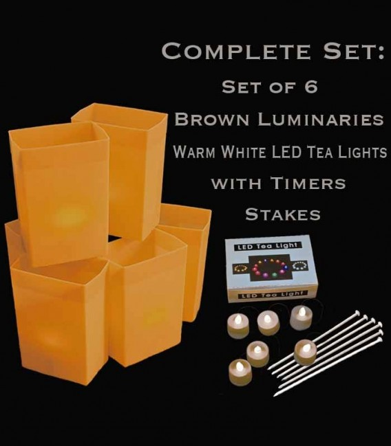 Set of 6 Brown Luminaries, warm white LED tea lights with timers, stakes
