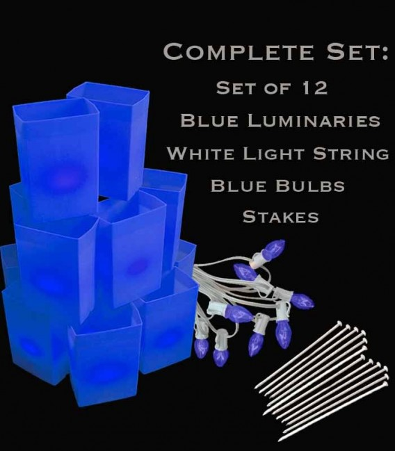 Set of 12 Blue Luminaries, white light string with blue bulbs, stakes