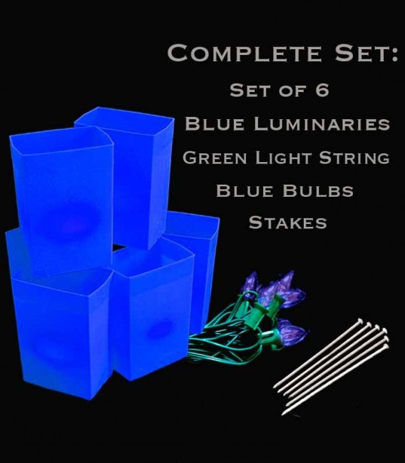 Set of 6 Blue Luminaries, green light strings with blue bulbs, stakes