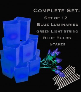 Set of 12 Blue Luminaries, Green Light String, Blue Bulbs, Stakes