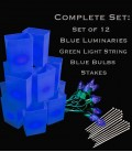 Set of 12 Blue Luminaries, Light String, Blue Bulbs, Stakes