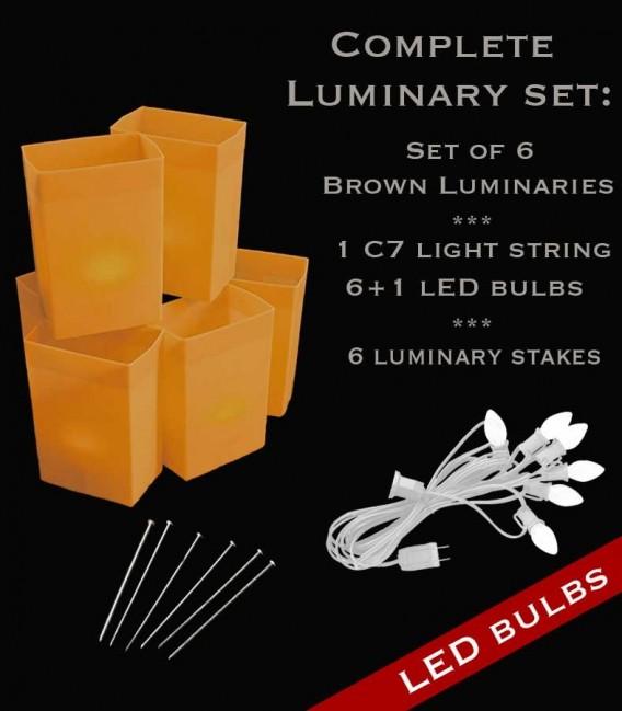 Set of 6 Brown Luminaries, White Light String, LED Bulbs & Stakes