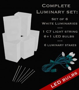 Set of 6 White Luminaries, Light String, LED Bulbs & Stakes