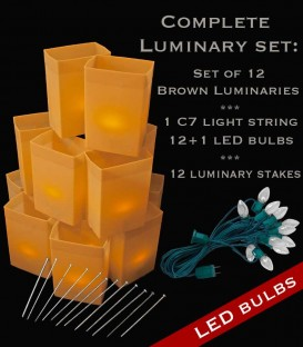 Set of 12 Brown Luminaries, Light String, LED Bulbs & Stakes