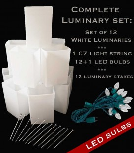 Set of 12 White Luminaries, Light String, LED Bulbs & Stakes