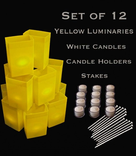 Set of 12 Yellow Luminaries, White Candles with Holders, Stakes