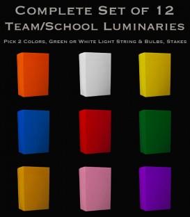 Set of 12 Team/School Luminaries, Light String, Bulbs & Stakes