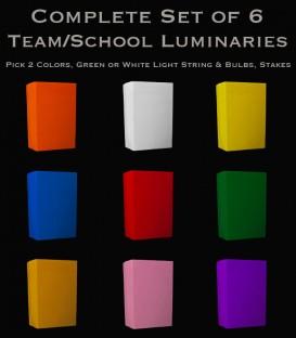 Set of 6 Team/School Luminaries, Light String, Bulbs & Stakes