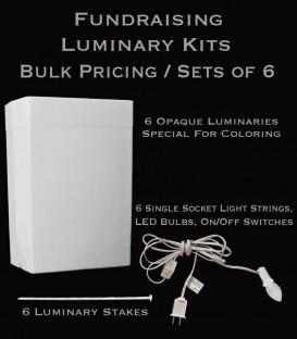 Bulk Fundraising Luminary Kits