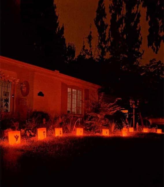 Set of 12 Halloween Luminaries