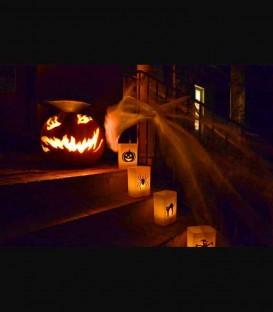 Halloween Decals