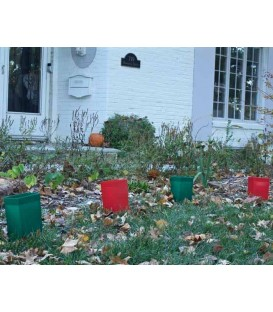 Holiday Luminaries